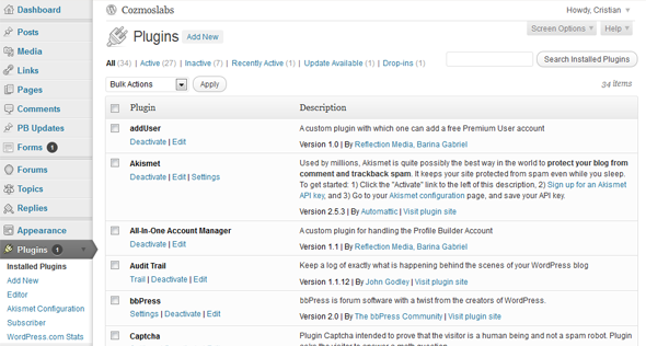 WordPress backend for installing and managing plugins.