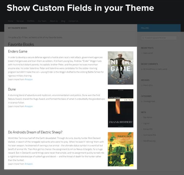 Show Custom Fields in your Theme