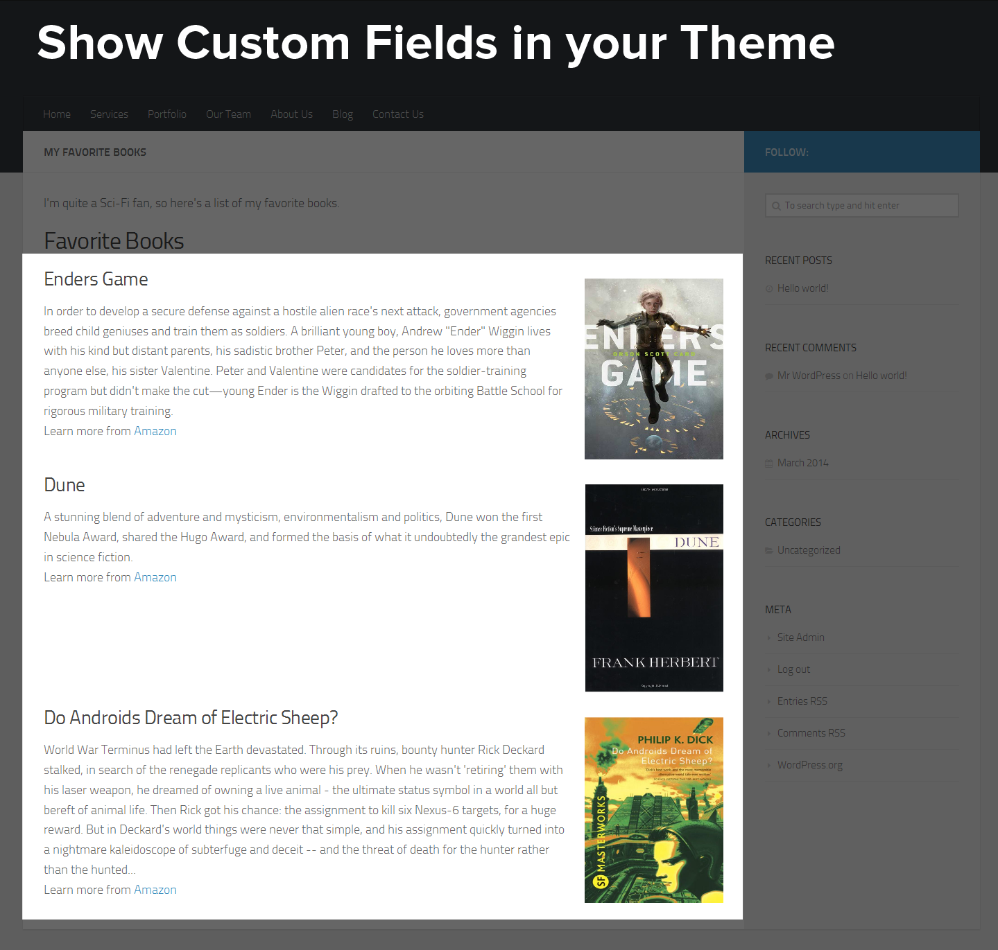 Show Custom Fields in your Theme