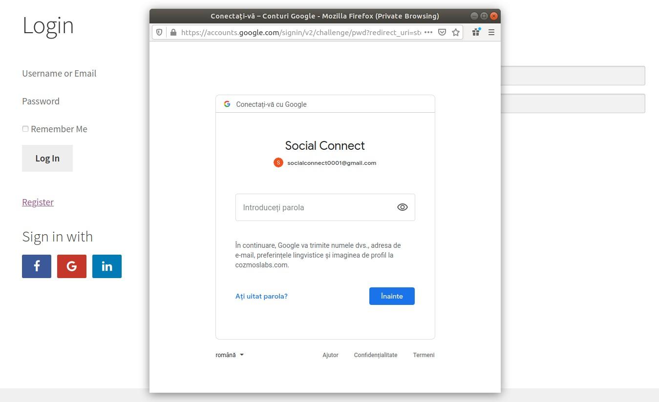 Profile Builder Pro - Social Connect - Using Social Connect - Google Popup Step 2