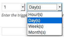email-reminders-trigger-time-unit