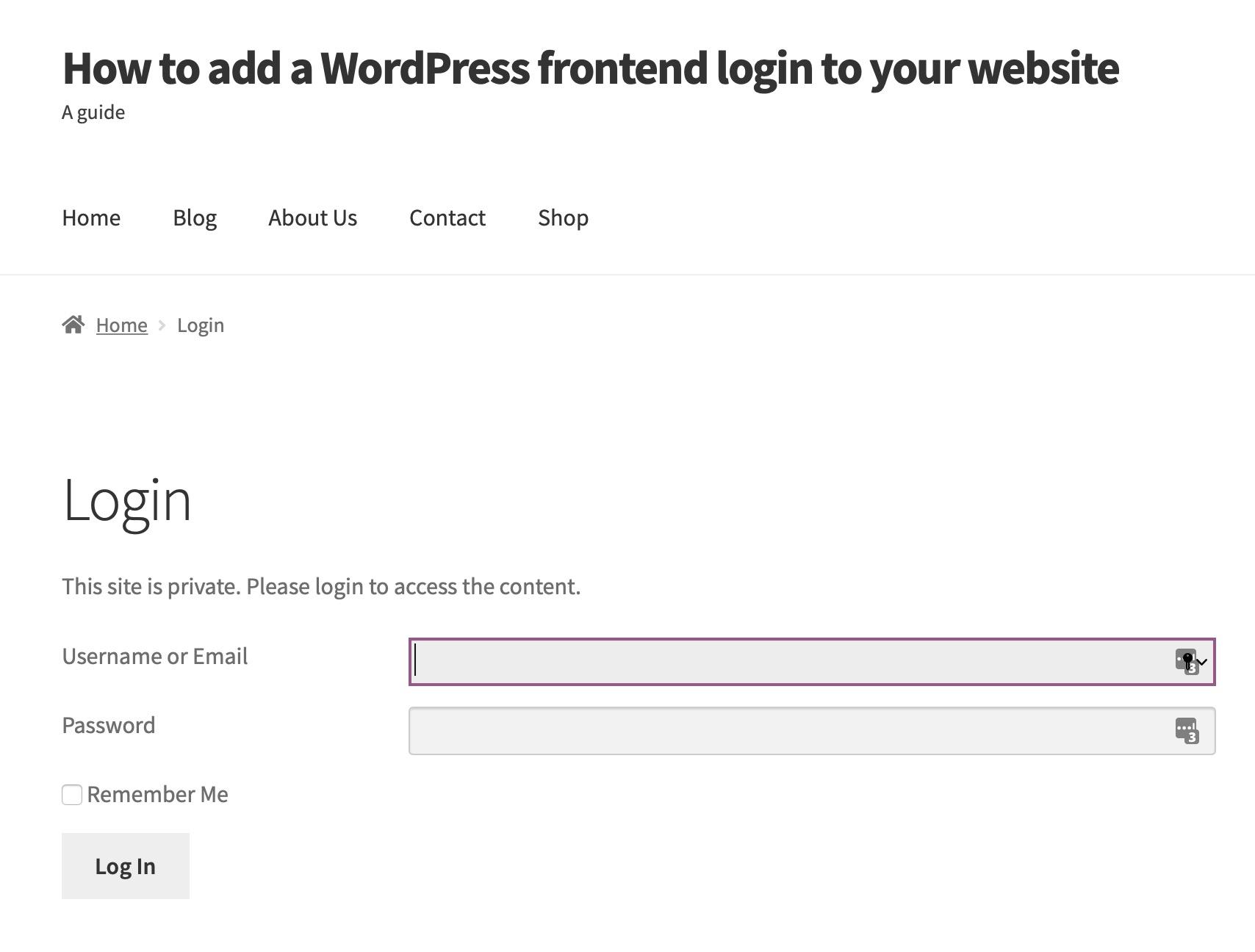 simple custom login page frontend