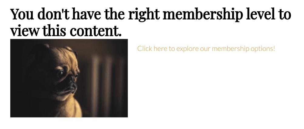 custom content restriction message