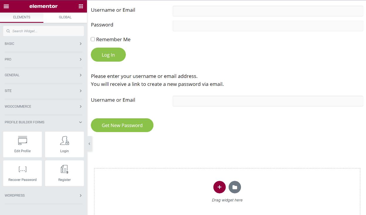 Custom elementor login form