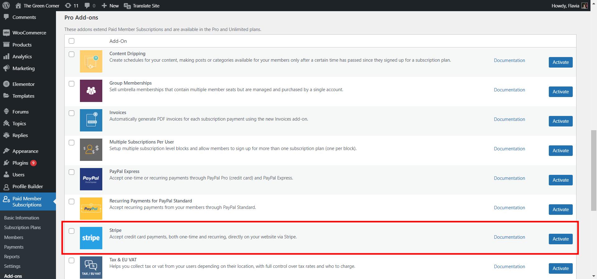 Activating the WordPress Stripe Payment Plugin